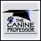 Dog Training | Service Dog Training